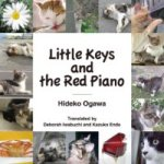 Little Keys and the Red Piano